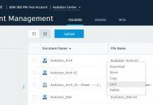 Autodesk BIM 360 Docs File Locking